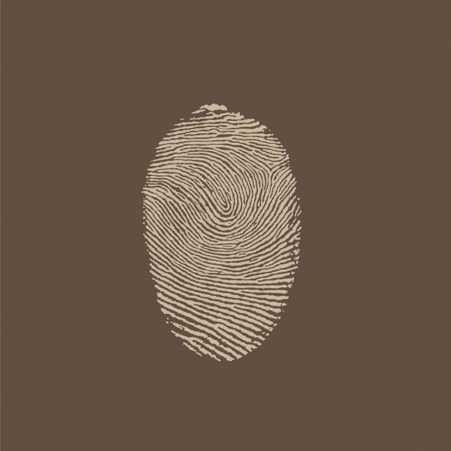 Illustrazione, Infografica, Logo, Grafica Campobasso